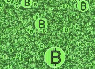 bitcoin grass roots
