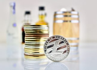 litecoin or bitcoin