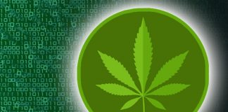 cryptocurrency-marijuana-stocks