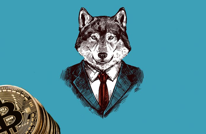wolf of coinstreet
