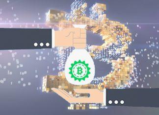 bitcoin investors